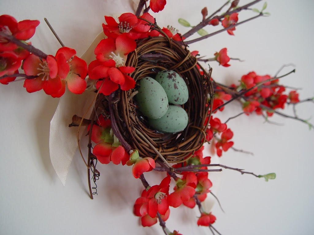 Spring Flowers and Nest
