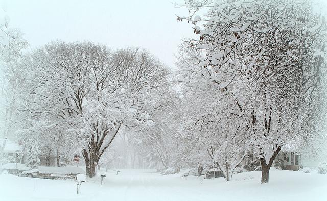 yarn love and snow